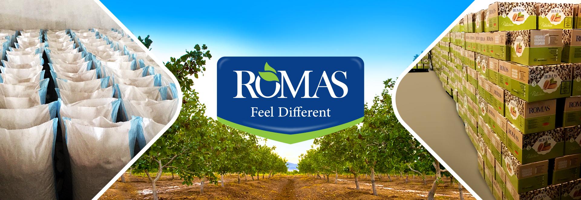 Romas feel different